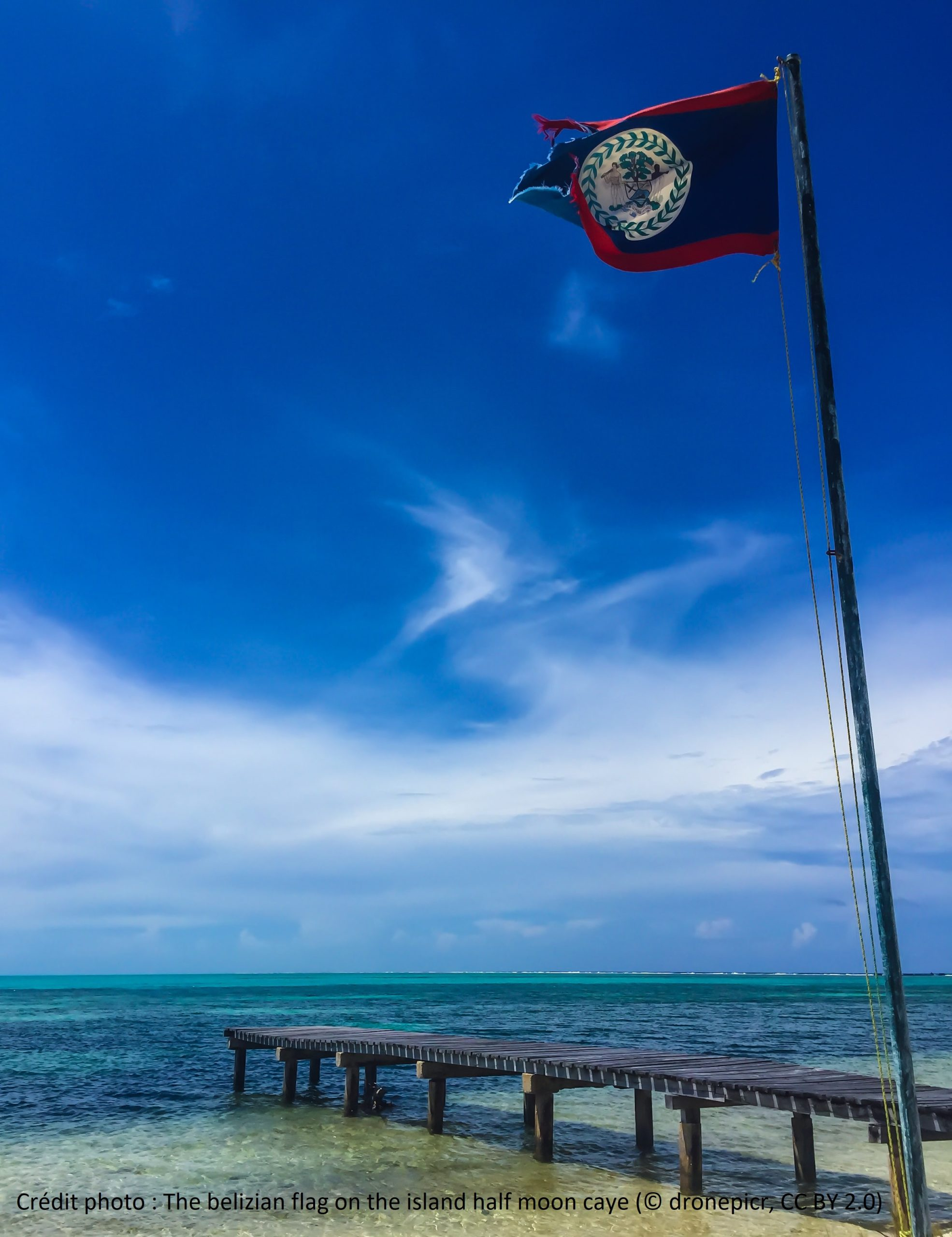 The belizian flag on the island half moon caye (CC BY 2.0)